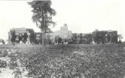 Wood County Asylum Asylum Projects